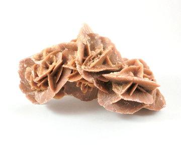 Woestijnroos (mooi formaat)