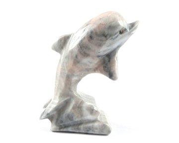 Dolfijn aragoniet