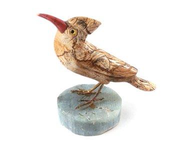 Vogel Jaspis op Amazoniet